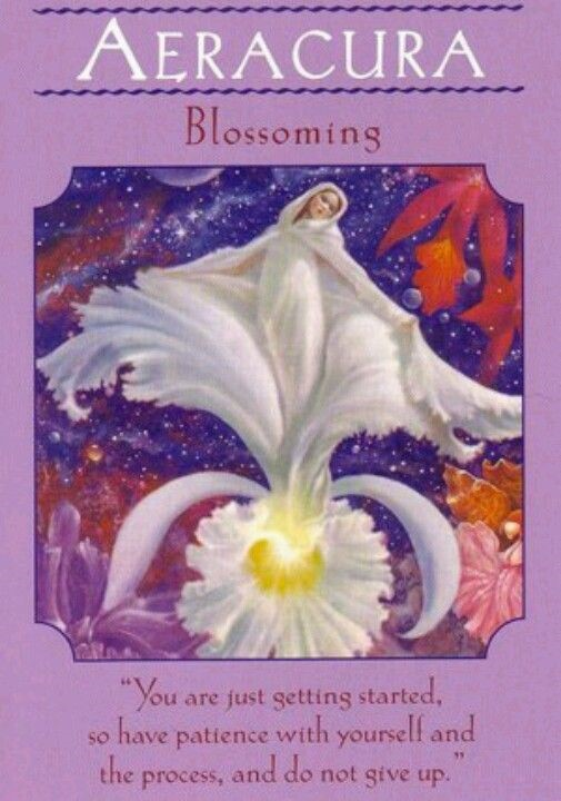 BLOSSOMING Angel Card
